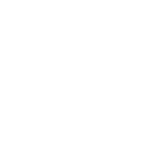 basic, white-vader, elemental, essential, key, main, necessary, primary, primitive, underlying, vital, capital, central, chief, principal