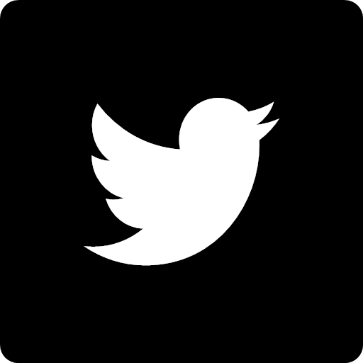 Social square twitter icon