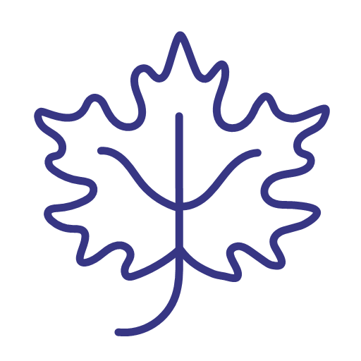 svg, fall, leaf, maple, icon